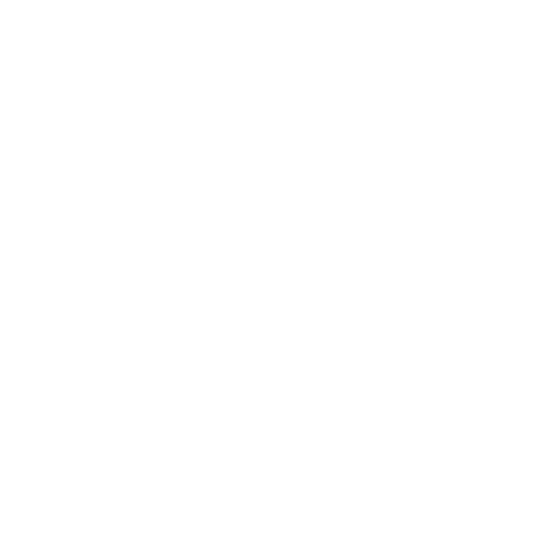 Dream everything