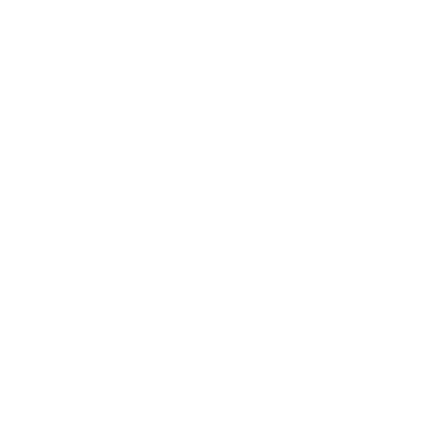 Do wheelies